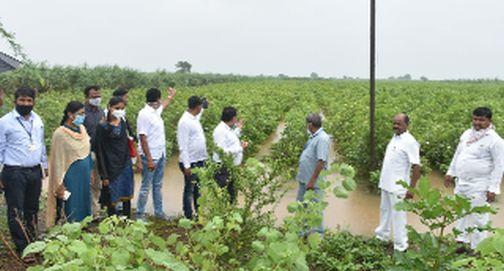 Farmers expressed displeasure during the inspection | पाहणीदरम्यान शेतकऱ्यांनी व्यक्त केली नाराजी
