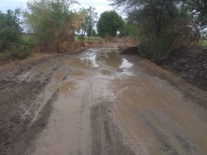 In the first rain, the roads started to fall | पहिल्याच पावसात रस्त्यांची लागली वाट