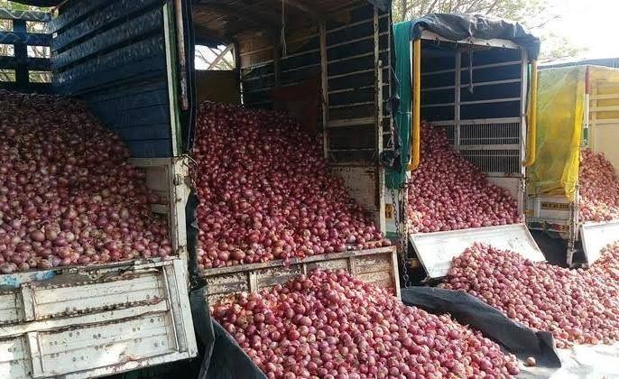 Onion prices plummeted in Chalisgaon market   चाळीसगावच्या बाजारात कांद्याचे भाव गडगडले