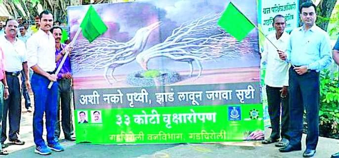 Public awareness on cultivation of tree dandhis | वृक्ष दिंडीतून लागवडीबाबत जनजागृती