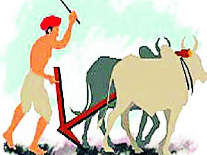 3,000 farmers await respect fund | ४१ हजार शेतकऱ्यांना सन्मान निधीची प्रतीक्षा