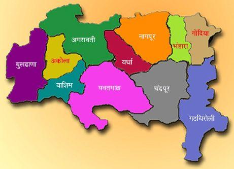 Vidarbha activists dissatisfied with the government's performance | सरकारच्या कामगिरीवर विदर्भवादी असमाधानी