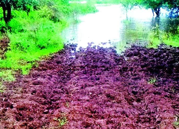 Due to the water of the Goskhurd Dam, the roads are waterlogged   गोसखुर्द धरणाच्या पाण्यामुळे शेती, रस्ते जलमय