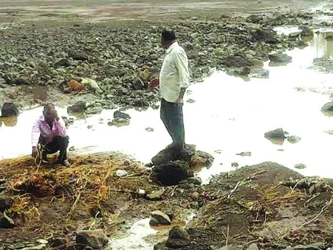 In the district of Buldhana, the land was scrapped by heavy rain | बुलडाणा जिल्ह्यात अतीपावसाने जमिनी खरडल्या