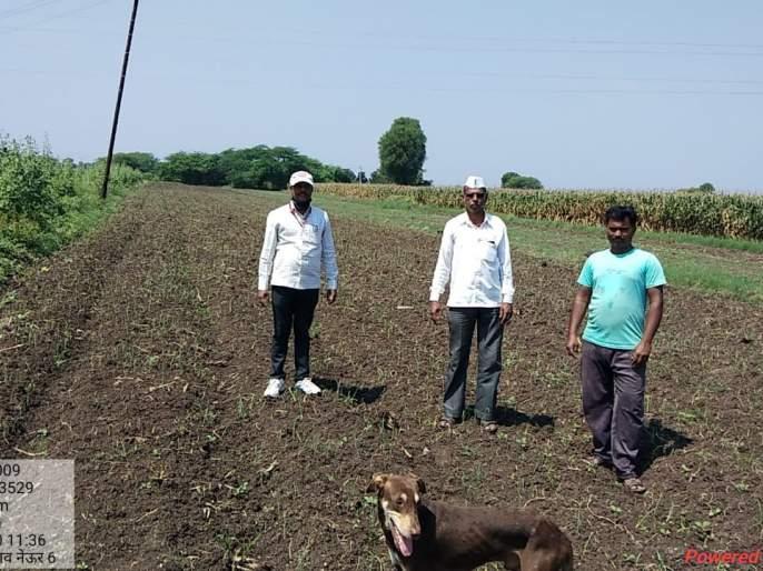 Crops on 16,000 hectares hit in Yeola taluka | येवला तालुक्यात १६ हजार हेक्टरवरील पिकांना फटका