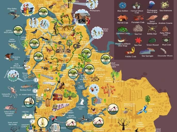 Biodiversity information can be found on the map   जैवविविधतेची माहिती नकाशातून मिळणार