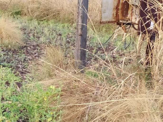 Electricity kills youth in Khambalewadi   खंबाळेवाडीतील युवकाचा विजेच्या धक्क्याने मृत्यू
