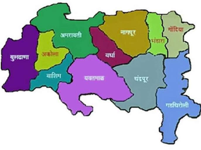 BJP ignores independent Vidarbha state   स्वतंत्र विदर्भ राज्याकडे दुर्लक्ष भाजपला भोवले