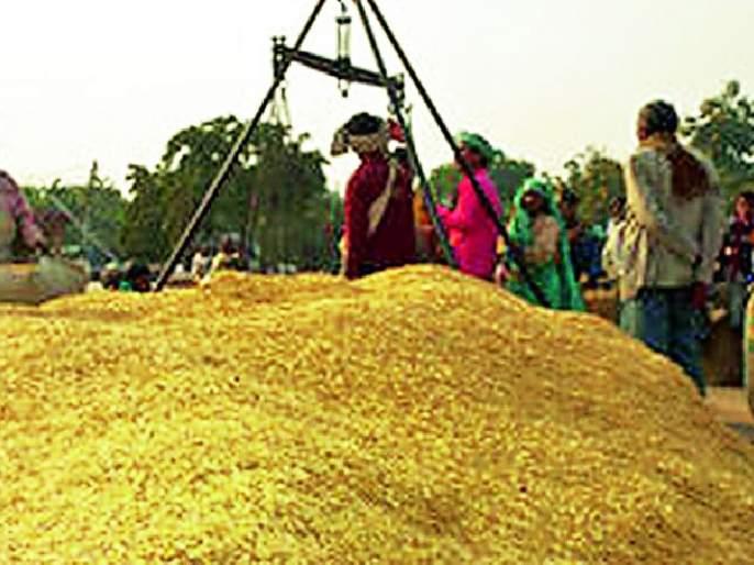 Paddy procurement started at 3 centers in the district | जिल्ह्यात २८ केंद्रांवर धान खरेदीला सुरूवात