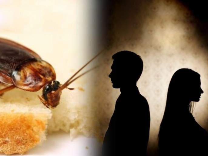 Wife feared cockroach husband wants divorce in Bhopal Madhya Pradesh | बोंबला! पत्नीला वाटते झुरळांची भीती, सॉफ्टवेअर इंजिनिअर पतीने मागितला घटस्फोट!