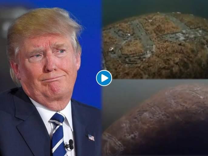 US fish and wildlife service are looking for the person who wrote trump on a sea mamma   VIDEO : 'या' समुद्री जीवाच्या पाठीवर लिहिलं TRUMP यांचं नाव, आरोपीची माहिती देणाऱ्यास मिळणार ३ लाख रूपये!
