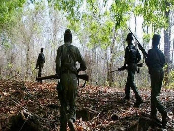 Two naxals killed in encounter between naxals and a team of DRG in Dantewada   छत्तीसगडमधील चकमकीत दोन नक्षलवाद्यांचा खात्मा