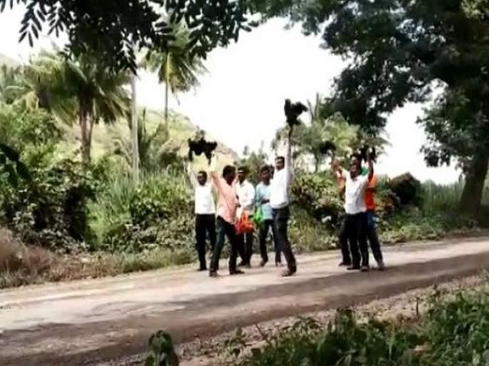 Kadaknath hips thrown in front of Mahajanade chariot   Video - मुख्यमंत्र्यांच्या महाजनादेश यात्रेवर कडकनाथ कोंबड्या फेकल्या, स्वाभिमानीचे आंदोलन
