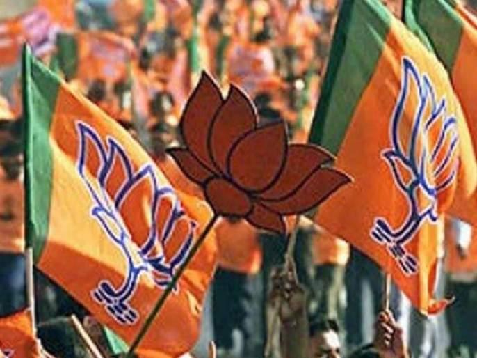 Suspension of 5 BJP members; Decision by taking action against the party | भाजपाच्या ५ सदस्यांचे निलंबन; पक्षाविरोधी कार्यवाही केल्याने निर्णय