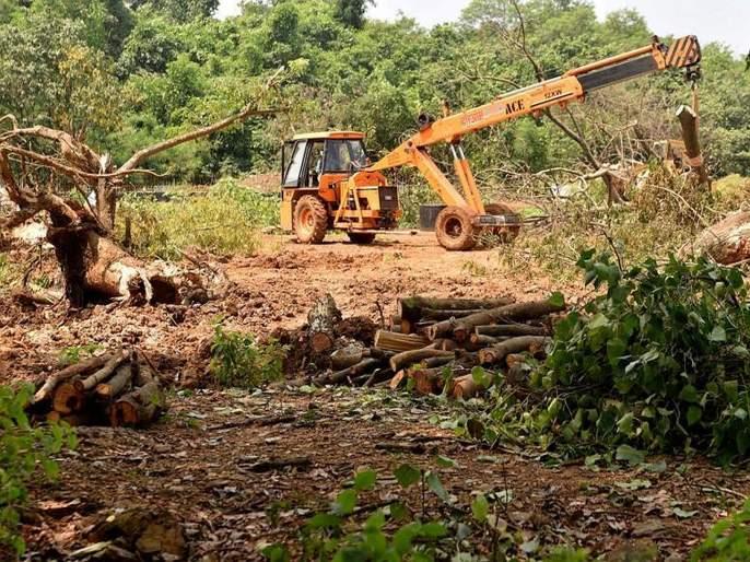 two crore 70 lakh spend for tree in aarey colony for metro carshed cutting reveals rti   आरेतील वृक्षतोडीत घोटाळा?; खर्चाचा आकडा पाहून धक्का बसेल