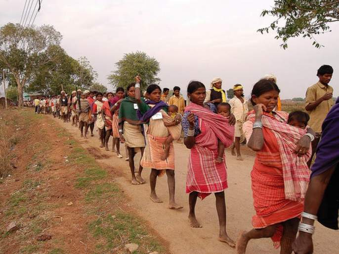 Only one per cent funding to the Tribal Development Department   धक्कादायक!आदिवासी विकासविभागाला केवळ एक टक्का निधी