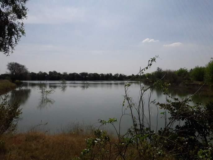When the river was alive again ..   नदी पुन्हा जिवंत होते तेव्हा..