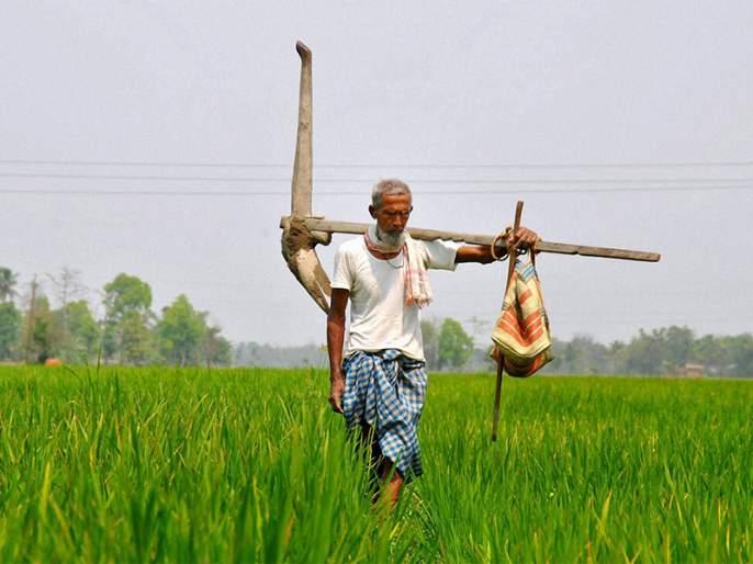Interim Budget 2019: modi government plans to raise rural spending by 16 percent to rural | Budget 2019: मोदी सरकार ग्रामीण भागासाठी 16 टक्के खर्चाची करणार तरतूद ?