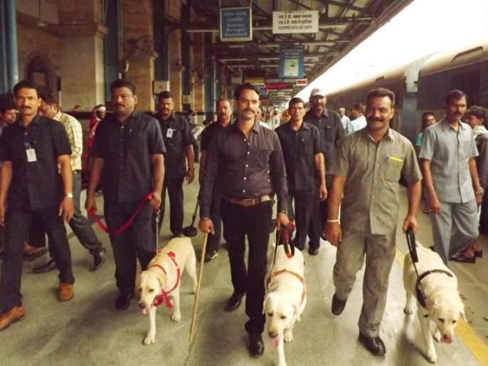 High alert issued on Nagpur railway station: BDDS deployed   नागपूर रेल्वेस्थानकावर हाय अलर्ट जारी : बॉम्बशोधक व नाशक पथक तैनात