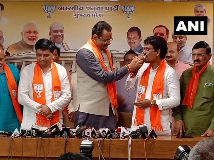 Alpesh Thakor & Dhaval Singh Zala join BJP | गुजरातमधील युवा नेते अल्पेश ठाकोर यांचा भाजपात प्रवेश