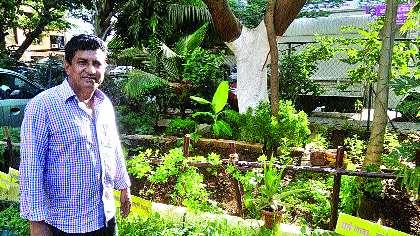 Falwell garden by manipulating the waste | कचऱ्यापासून खतनिर्मिती करून फुलविली बाग