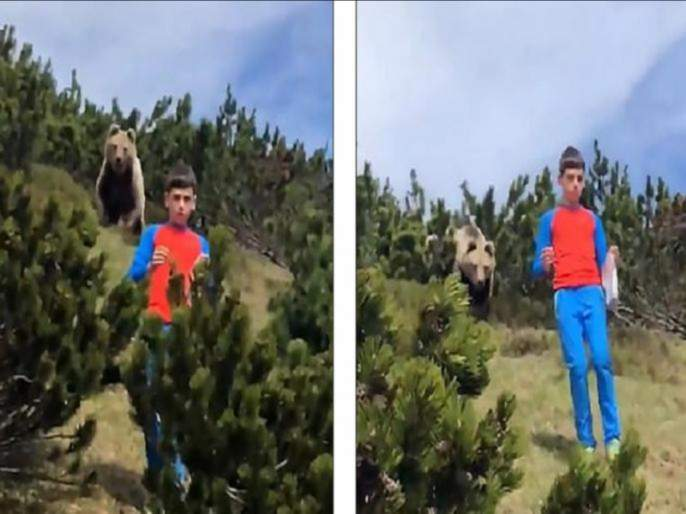 Social Viral : 12 year old boy keeps calm when huge bear following him italian hills, watch video svg   जंगल बुक : 12 वर्षांच्या मुलामागे लागला अस्वल; त्यानंतर जे घडलं, ते पाहून सर्वच झाले हैराण