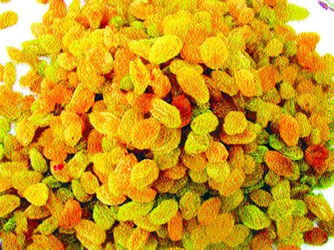 Sweeten the sales turnover with Diwali due to Diwali | दिवाळीमुळे बेदाण्याला विक्रमी उलाढालीचा गोडवा
