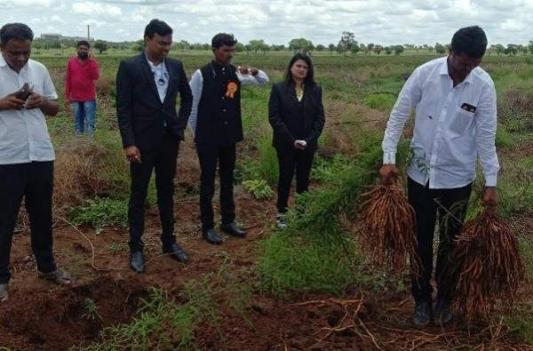 He took risks and planted asparagus, earning an income of Rs 10 lakh per acre in beed | थोडीशी रिस्क घेतली अन् पठ्ठ्यानं एका एकरात 10 लाखांचं उत्पन्न कमावलं