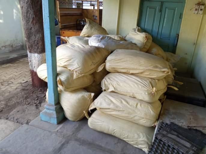 Two tonnes of cannabis seized in Akola | अकोल्यात तब्बल दोन टन भांग जप्त