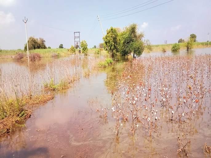 Jaikwadi inflatable water crop; Water also entered the house | जायकवाडीच्या फुगवट्याचे पाणी पिकात; घरातही शिरले पाणी