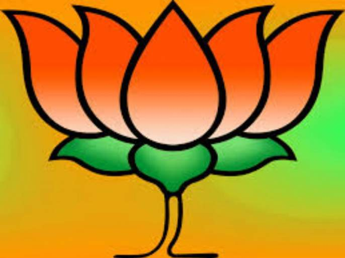 Sure about results but BJP will keep eye.. | निकालाची खात्री, मात्र तरी लक्ष ठेवणार : भाजपा