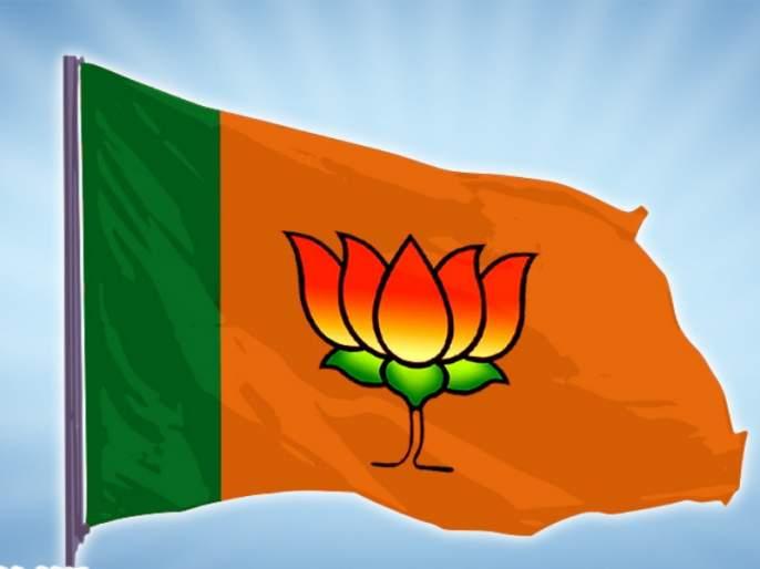 leading voting by public for BJP ! BJP believes   भाजपाच्या हातावर मताधिक्याचा शिक्का ! भाजपाला विश्वास