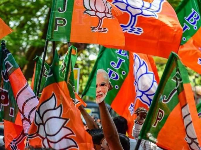 BJP candidate's wealth increased by 185 crores in 18 months | अबब... १८ महिन्यांत १८५ कोटींनी वाढली भाजपा उमेदवाराची संपत्ती