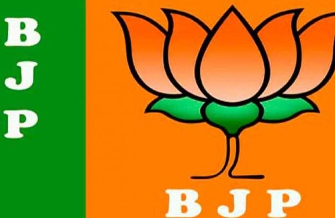 BJP's 'Team' announcement for the elections in Nagpur | नागपुरात निवडणुकांसाठी भाजपाच्या 'टीम'ची घोषणा