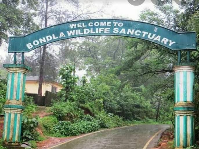 Goa's Bondla zoo gets Centre's nod for Rs 50 crore facelift | बोंडला अभयारण्याचा चेहरा-मोहरा बदलणार; केंद्राकडून 50 कोटी मंजूर
