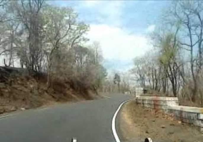 Buldana-Khamgaon road passing through Dnyanganga sanctuary reopen | ज्ञानगंगा अभयारण्यातून जाणाराबुलडाणा-खामगाव मार्ग सुरू