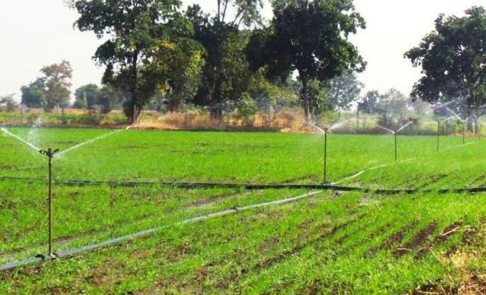 Krishi sanjivani Scheme Support of farmers for agricultural revival | कृषी संजीवनीचा शेतकऱ्यांना आधार