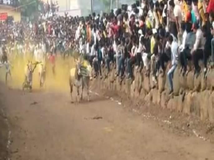 Organizing bull cart race at Songaon in Baramati taluka; crime registred against Both | बारामती तालुक्यातील सोनगावात बैलगाडा शर्यतीचे आयोजन; दोघांवर गुन्हा दाखल