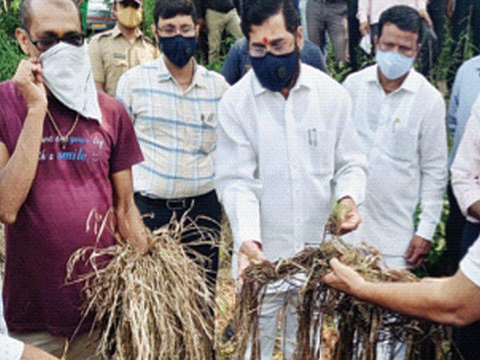 No farmer will be deprived of help says Guardian Minister eknath shinde   एकही शेतकरी मदतीपासून वंचित राहणार नाही, पालकमंत्री एकनाथ शिंदेचे तातडीने अहवाल देण्याचा आदेश