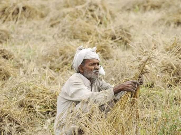 Farmers will get debt relief from shivsena, congress, ncp | सरसकट शेतकरी कर्जमाफीचा मार्ग होणार मोकळा ?