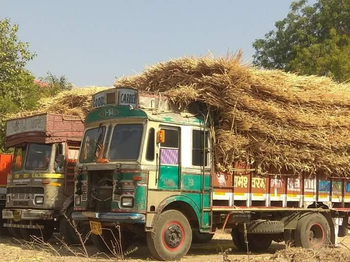 The 'dry bait' of the Chalisgaon area is known as Kadadla | चाळीसगाव परिसरात 'कोरडा चारा' कडाडला