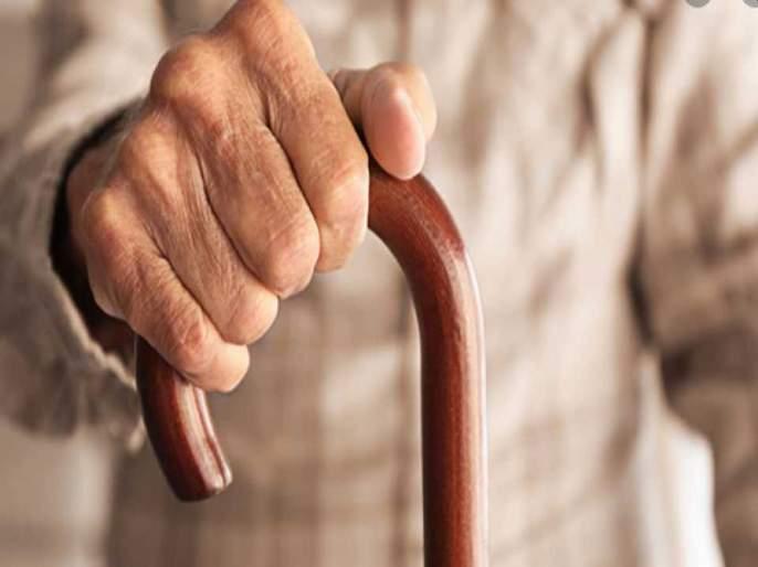 Budget 2021: 100% tax exemption for senior citizens; In old age, financial well-being should be allowed to live a tax-free life | Budget 2021: ज्येष्ठ नागरिकांना करातून १०० टक्के सूट द्यावी;उतारवयात आर्थिक सुबत्ता करमुक्त जीवन जगू द्यावे