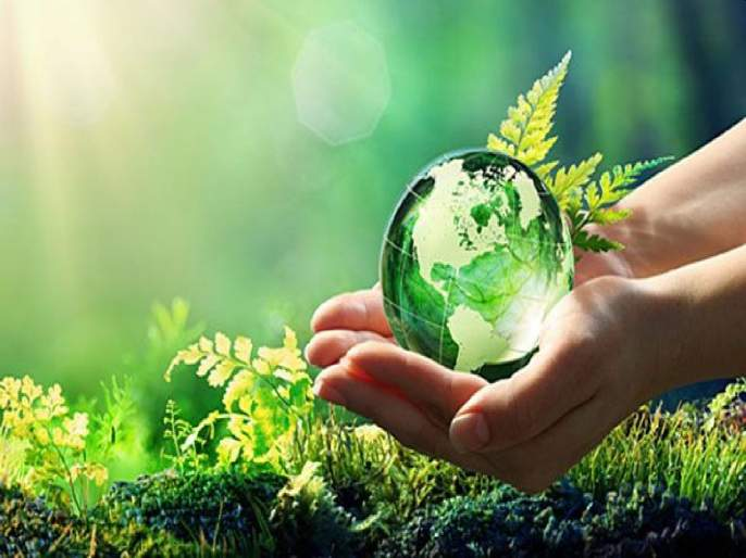 Budget 2021: The country's budget should be environmentally friendly; Plans for conservation are on paper.   Budget 2021: देशाचा अर्थसंकल्प पर्यावरणपूरक असावा; संवर्धनासाठीच्या योजना कागदावरच आहेत.