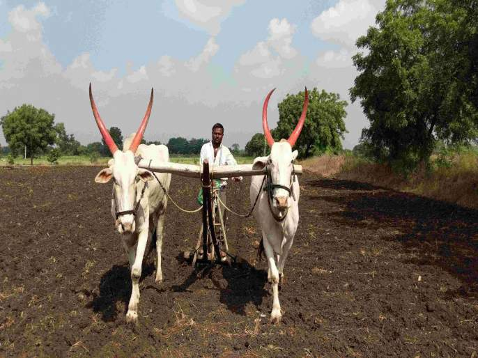 The wheels of the rural economy are still spinning | ग्रामीण अर्थव्यवस्थेची चाके अद्याप रुतलेलीच