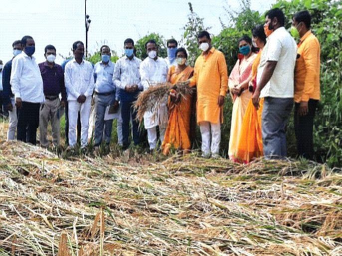 Farmers should not have any problem in getting crop insurance - Shrirang Barne | शेतकऱ्यांना पीक विमा मिळण्यात अडचण नको - श्रीरंग बारणे