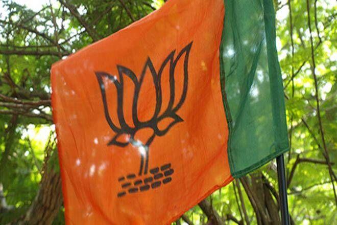 BJP has majority in 11 places in Kalyan taluka, | कल्याण तालुक्यात ११ ठिकाणी भाजप बहुमतात, महाविकास आघाडीची ९ ठिकाणी बाजी