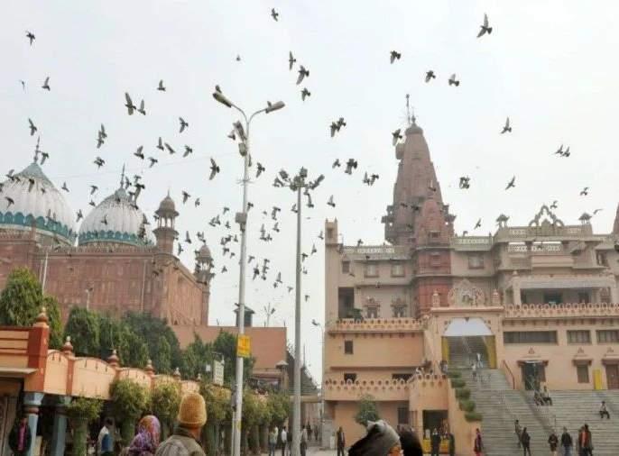 mathura shrikrishna janambhoomi mathura civil court will hear case on 30th to shift shahi Eidgah | ShriKrishna JanamBhoomi: श्रीकृष्ण जन्मभूमीप्रकरणी 30 तारखेला सुनावणी, शाही ईदगाह हटविण्याची मागणी