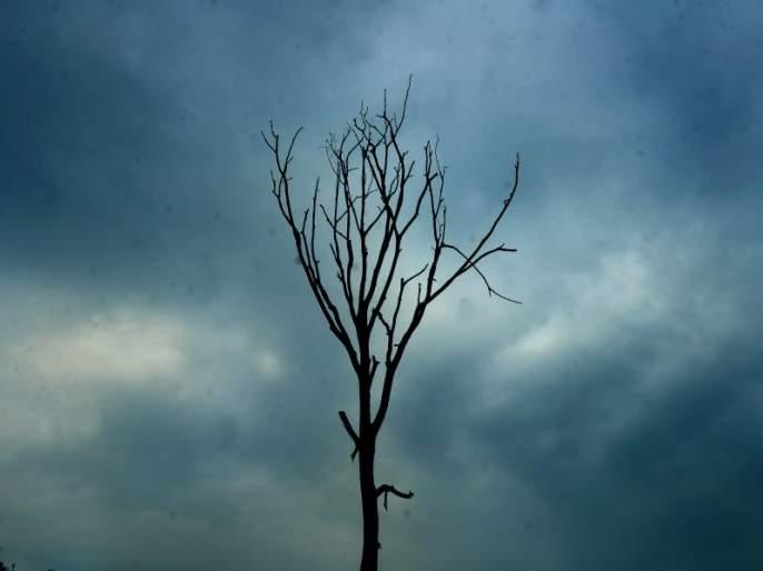 Establishment of sukanu committee for artificial rain; Experiment is possible from 1st August | कृत्रिम पावसासाठी सुकाणू समिती स्थापन; १ ऑगस्टपासून मराठवाड्यात प्रयोग शक्य