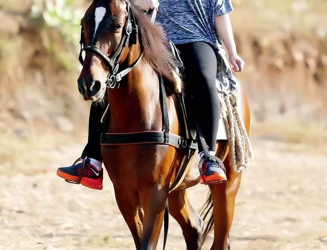 Urvashi drummer takes a horse-riding training for 'Chandrakanta' series | 'चंद्रकांता' मालिकेसाठी उर्वशी ढोलकिया घेते घोडेस्वारीचे प्रशिक्षण