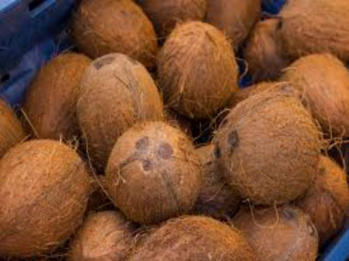 Coconut quality dropped due to heavy rains | अवकाळी पावसाने नारळाचा दर्जा घसरला